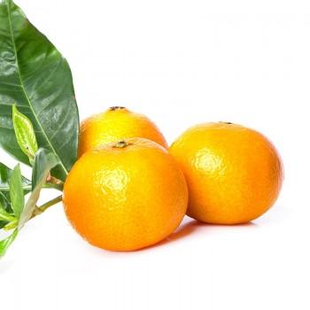 Clementina Cultifort Vit&Fruit - Caja 8 kgs. Mandarinas