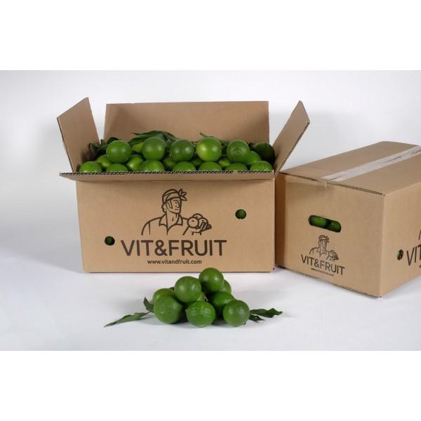 Limas Tahití Vit&Fruit - Caja 10kgs Limas Vit&Fruit