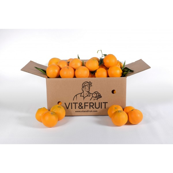 Naranjas Vit&Fruit - Caja 10 Kgs. Zumo Naranjas Vit&Fruit