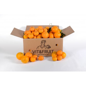 Caja Mixta Clementina Orri 5 kgs + Naranjas Navelate 5 kgs Vit&Fruit. Mandarinas Vit&Fruit